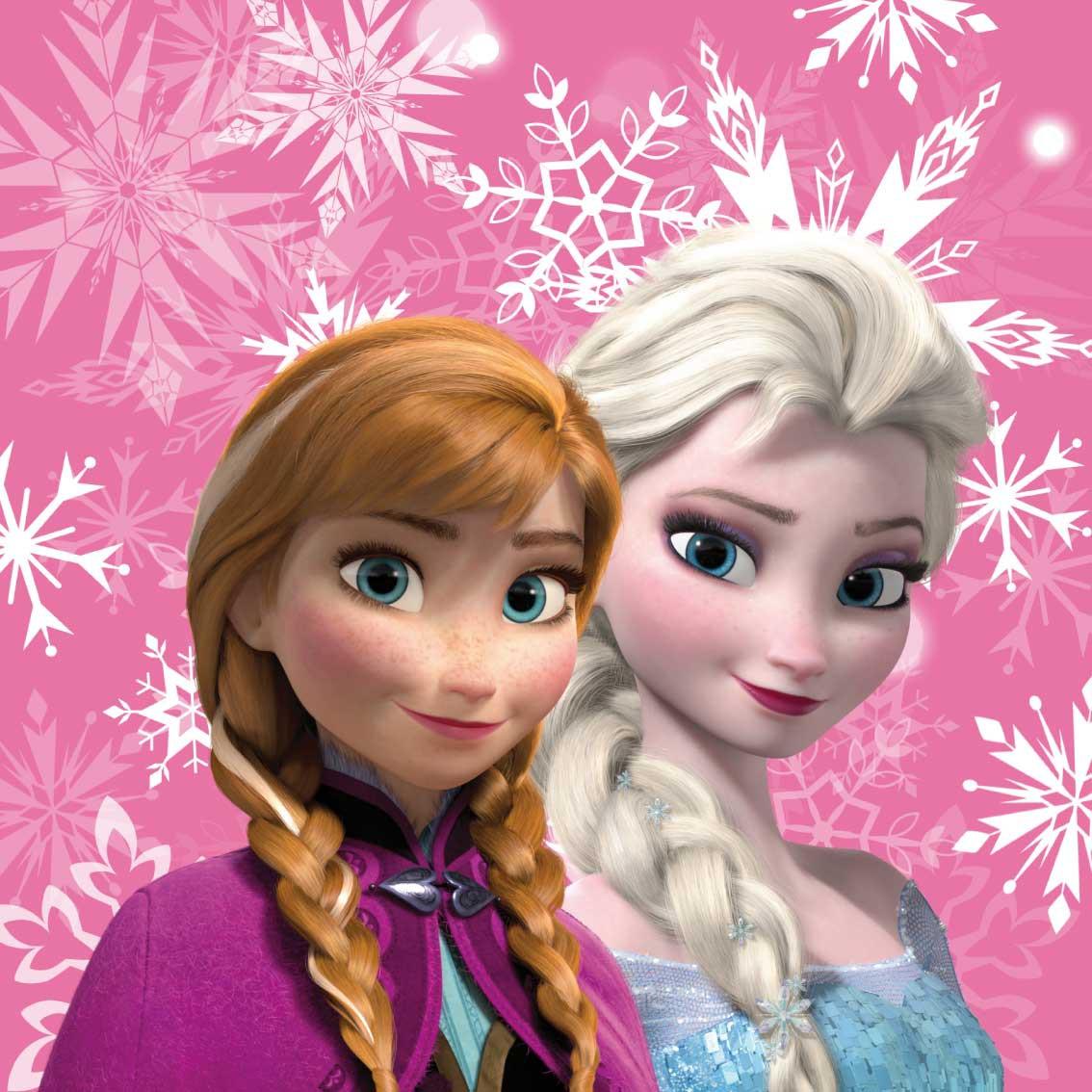 Frozen sisters, fotopolštářek s výplní