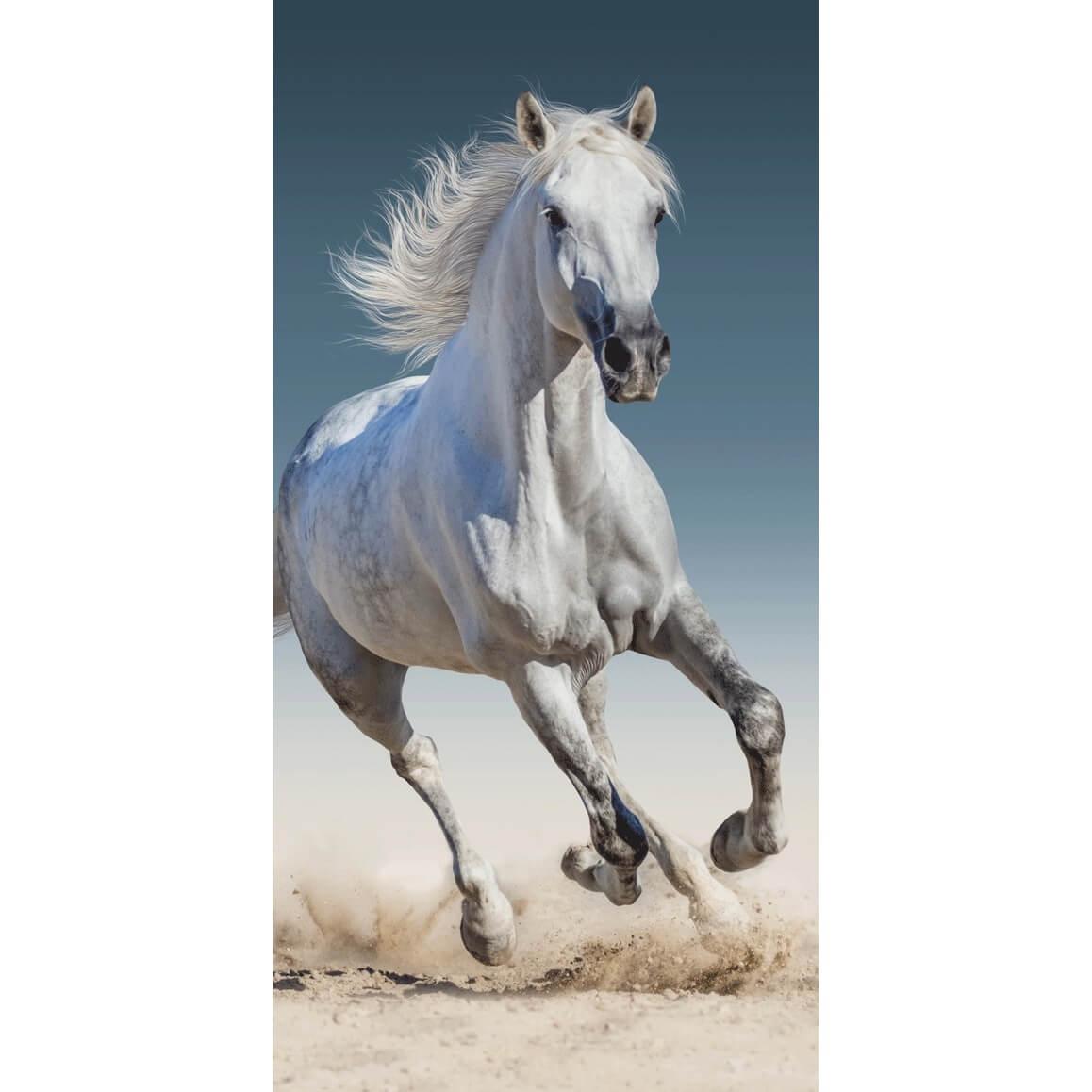Kůň 03, plážová osuška, rozměr 70 x 140cm